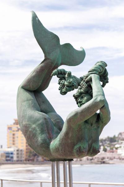 La Sirena Carpa Olivera.   Photo © by Gabriel Zimmerman.