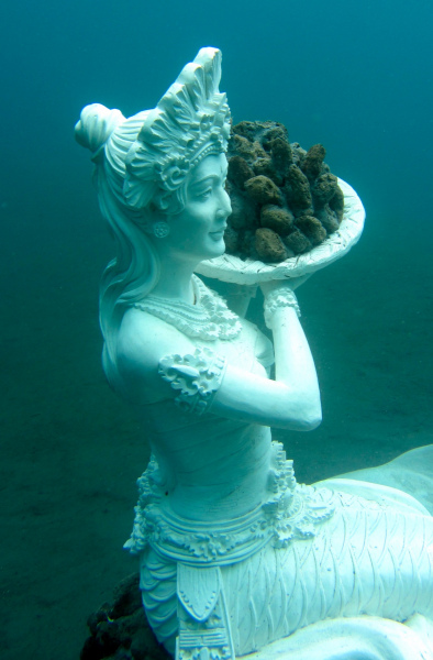 The Coral Reef Mermaid in Jemeluk Bay.  Photo © by Fiona Childs and Marine Foundation.