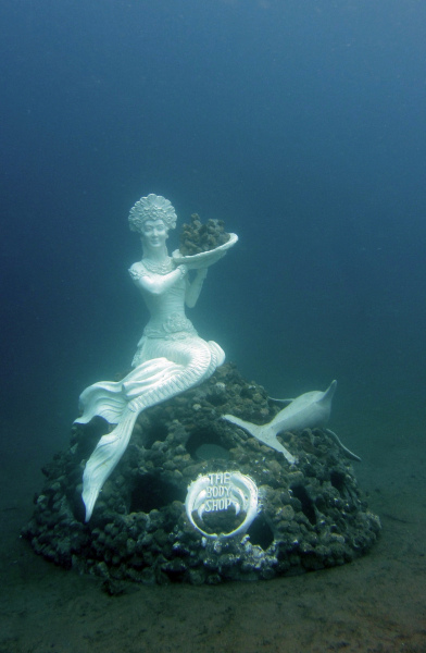 The Coral Reef Mermaid in Jemeluk Bay.  Photo © by Luca Vaime and Marine Foundation.