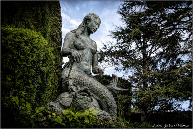 On of the 5 Santa Clotilde Mermaids.  Photo © by Antoni Gallart Vilarrasa.
