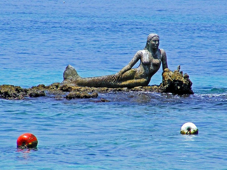Isla Del Pirata Sirena Mermaids Of Earth