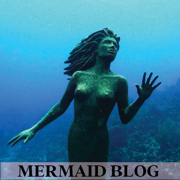 Mermaid Blog